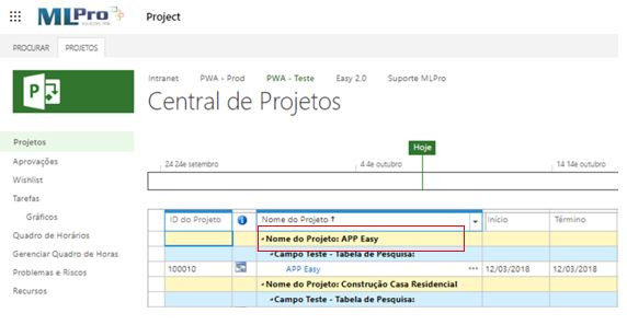 project-online-check-out (2)